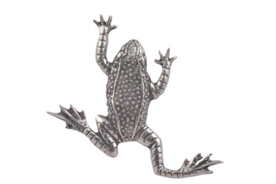 Frog CGHL0020
