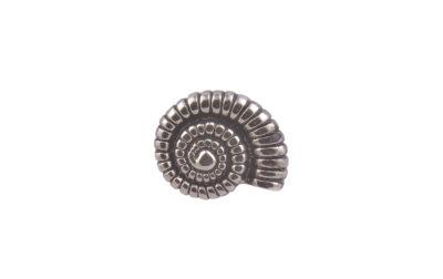 Ammonite Fossil CGHL0027
