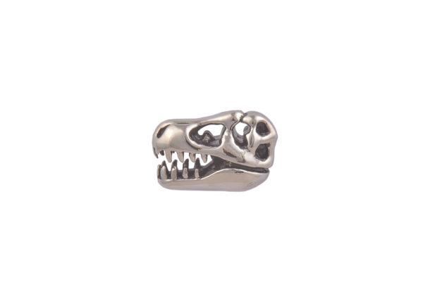 Dinosaur Skull CGHL0043