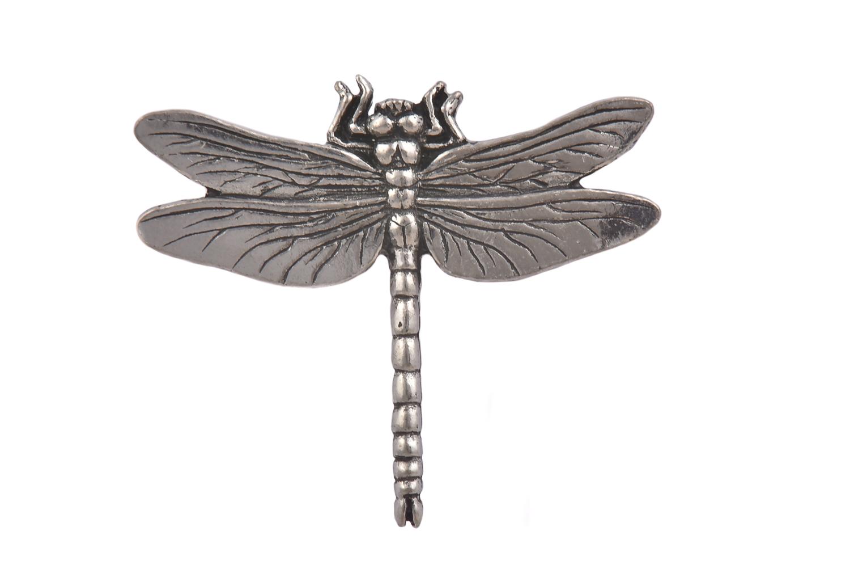 Dragonfly CGHL0046