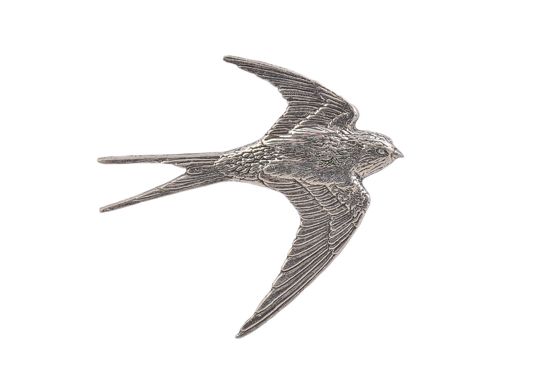 Swallow Bird CGHL0050