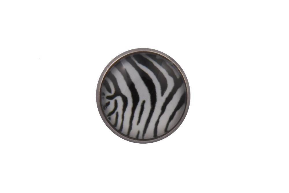 Zebra Stripes Lapel Pin Badge