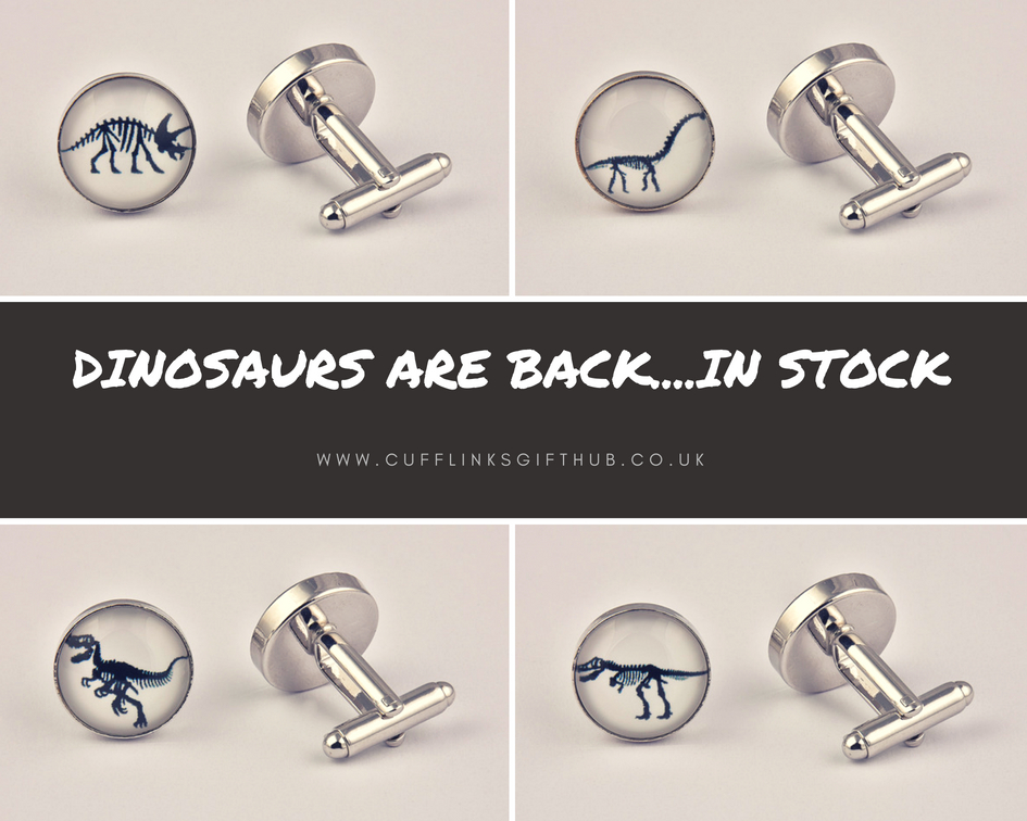 Mens Dinosaur Cufflinks